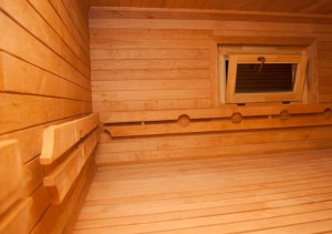 Вип Сауна (saunavip.kiev.ua) - баня в Киеве в парке дружбы народов в Х парке  у реки. Отзывы